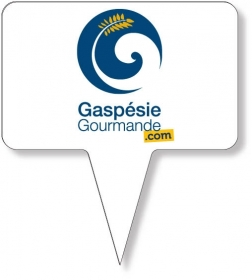 "Promotional products: Food Pick on FDA approved .030 white plastic, Rectangle Sign Shape (2.5"" x 4"") Screen printed"