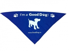 Promotional products: Pet Bandana 22x22