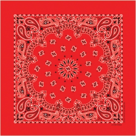 Promotional products: Blank Non-printed Paisley Bandanas